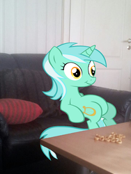 Lyra eating snacks in my living room - Sofa by PokemonBWishesCilan