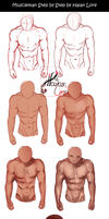 Muscleman Step by Step by HalanLore