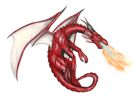 Red Dragon by shadee