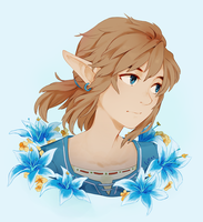 Hylian Champion by lulles