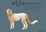 The Savannah Queen 657 by SheduMaster