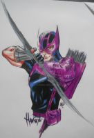 Hawkeye by Sallysammy