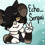 EchoSenpai by Strawberrybearz