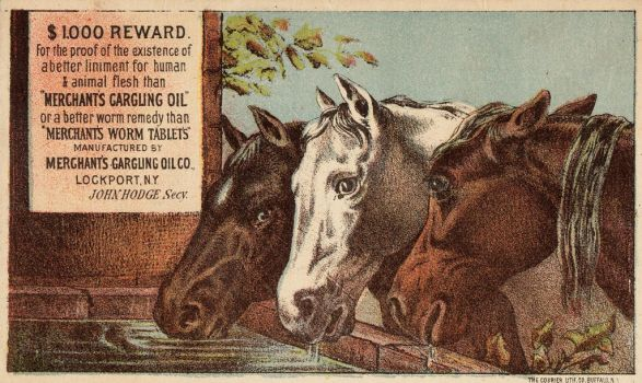 Victorian Advertising - Healthy Herd by Yesterdays-Paper