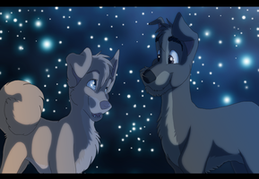 Bella Notte by Tellequin