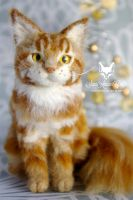 Tabby Maine Coon miniature by SaniAmaniCrafts