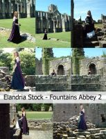 Fountains Abbey Stock Set 2 RESTRICTED by Elandria