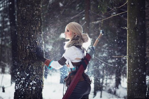 The Witcher 3: Wild hunt - White Frost by ver1sa