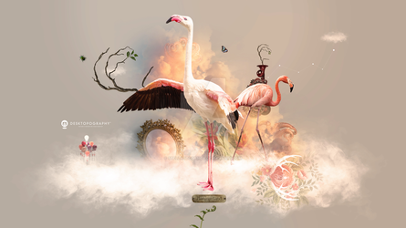 Flamingo Land by stellartcorsica