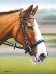 2nd Horse Painting by NewAgeTraveller