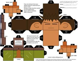 Brock CubeeCraft Template by dcponcho
