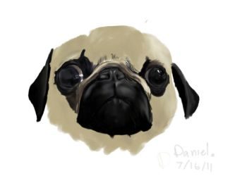 Pug your face by Hobbles808