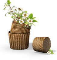 [RES] Flowers in the Basket PNG by HanaBell1
