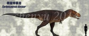 Tarbosaurus bataar by sinammonite