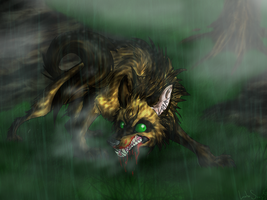 In the Rain by LoboSong