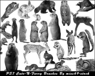Cute-n-Furry Critters Brushes by miss69-stock