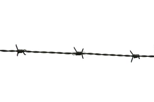 Barbed Wire by GreenFroggy489
