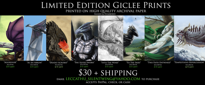 Limited Edition Prints for Sale - $30+shipping by LeccathuFurvicael