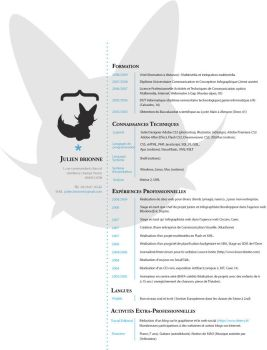 Resume by Akashrine