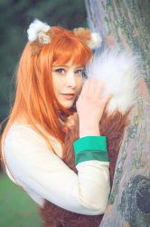 Horo the wise wolf by fotoboerb