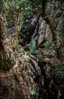 Waterfall At Serra da Lousa - Portugal by Woscha