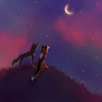 counting stars by catnoodlesx