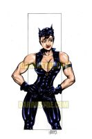 CATWOMAN SHOWS SOME MUSCLE by Dwid