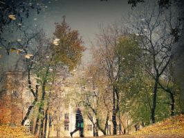 Street in the Puddle IV by Sulde