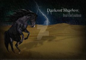 Darkest Shadow by leathermoorehollow45