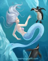 Mermaid With Penguins - COLOR by DreamPigment