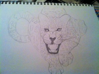 Angry Leopard sketch by tigerstar44