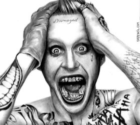 Jared Letto - THE JOKER by Doctor-Pencil