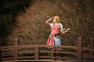 Zelda: Waiting for Link by OscarC-Photography