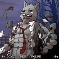 Shift by COMMANDER--WOLFE
