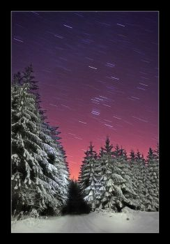 stars and trees by Torsten-Hufsky