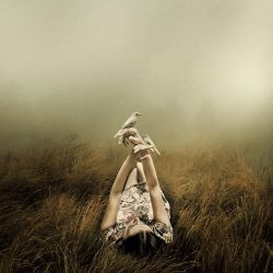 Far From The Rivers by MartinStranka