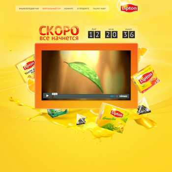 Lipton promo page by nikitaindesign