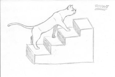 Cat on Stairs by Bill-et-al