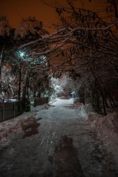 Winter path by ice4you