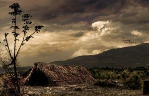 Shelter of the Lost by ahmedspeculates