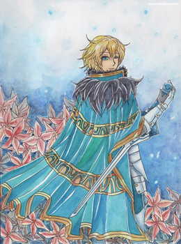 Knights of the Round Table - Gawain [Fate/ GO] by shadowknightpaladin