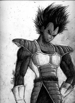 Saiyan saga Vegeta by Vegetasotherwife