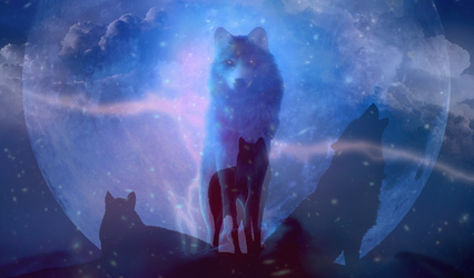 Wolves(Original from three pics)