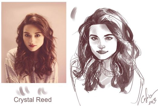 Allison Argent - Crystal Reed by Cofie