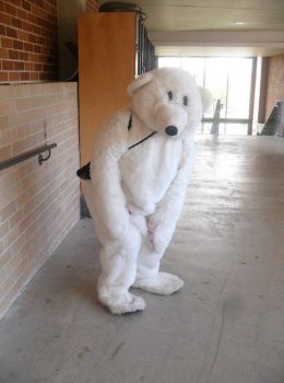 Yr 12 Muck Up Day - Polar Bear - Try catch me? by I-Have-A-Jar-Of-Dirt