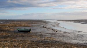 Low tide on Bassin d'Arcachon by gwenoder