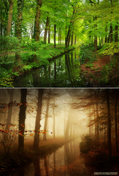 Difference Of Weather and Season by Nelleke