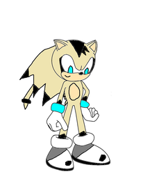 Matt the Hedgehog by PatrykGr