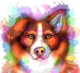 Rainbow Border Collie by EverlastingDerp