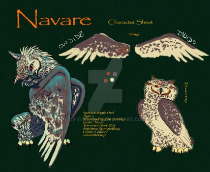 Navare Character Sheet by 39-TheWolf